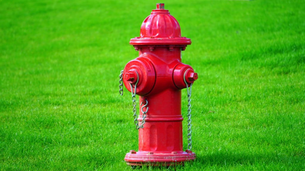 red fire hydrant in grass