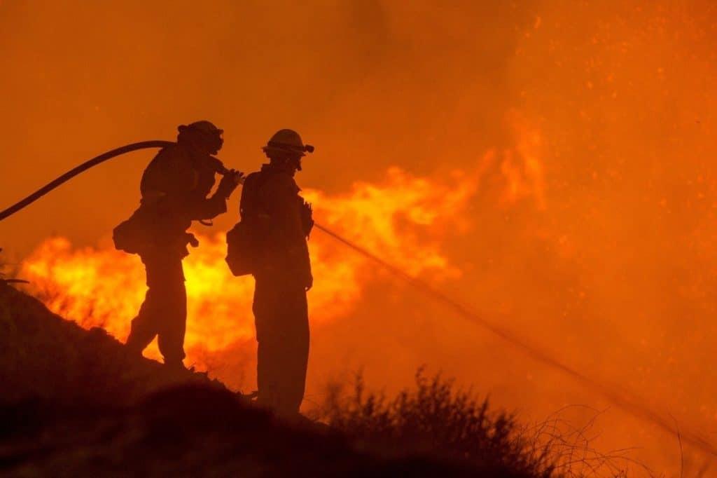 firefighters on wildland fire