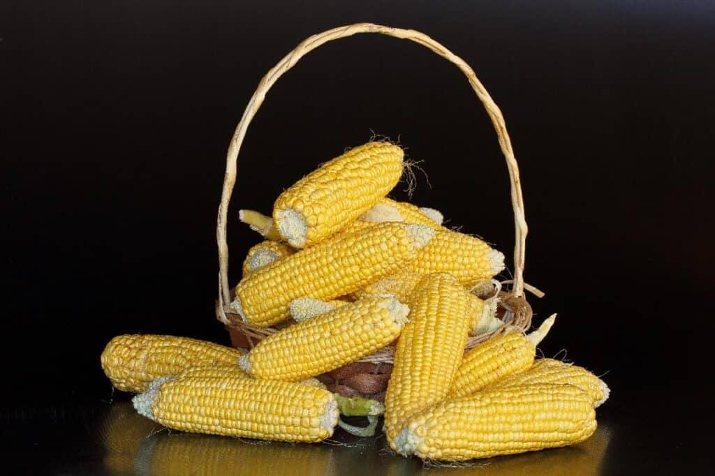 is cornstarch flammable?