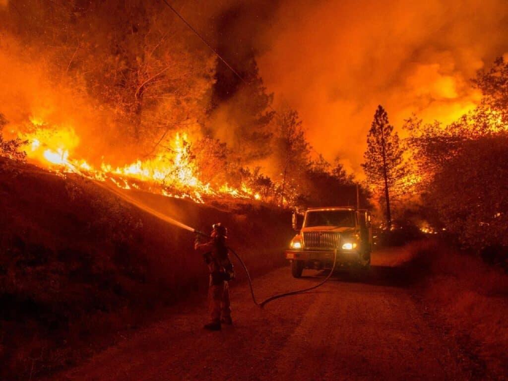 wildland firefighter at work
